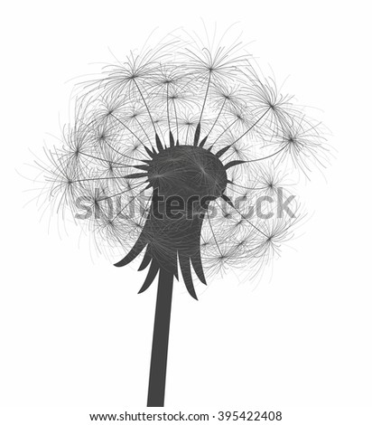 Flower of field dandelion.