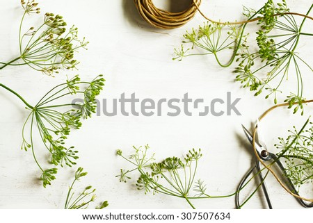 Flower of green dill on wooden background with copy space. Fennel. Selective focus - stock photo