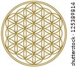Flower of Life - Gold / Flower of Life / The Flower of life is an ancient symbol of Sacred Geometry and represents the fundamental order of creation. - stock vector