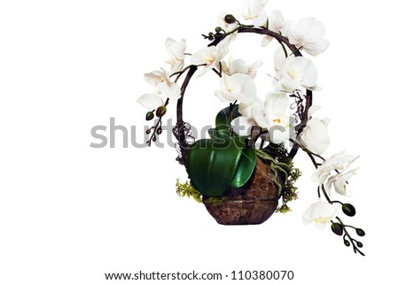 flower of orchid in basket - stock photo