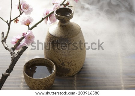 Flower Of Plum And Sake - stock photo