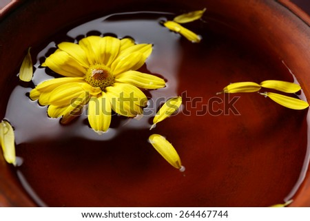 Flower petals in bowl, close-up - stock photo
