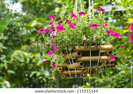 Flower plant in basket hanging in the garden - stock photo