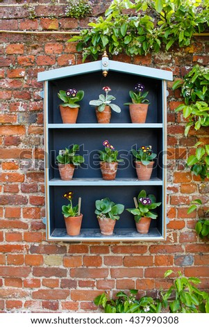 Flower plant wall display