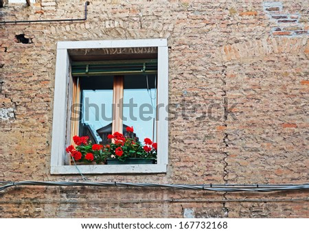 flower pot on an old sill