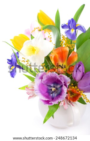flower spring isolated on white  - stock photo