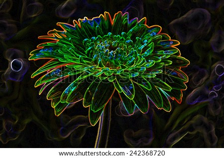 flower stylize growing edge effect   - stock photo