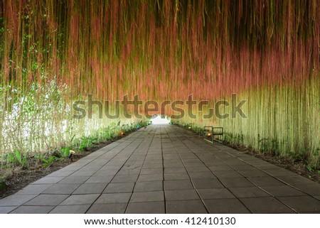 flower tunnel - stock photo