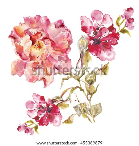 flower watercolor background floral illustration album roses watercolor flower watercolor