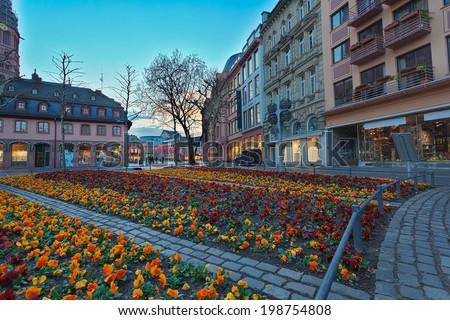 Flowerbed in european city center. Mainz. Germany - stock photo