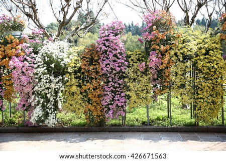 flowerbeds background