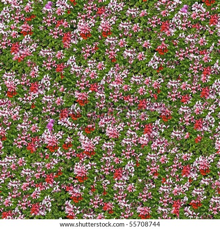 Flowered bed seamless background. (Seamless pattern for  continuous replicate). - stock photo