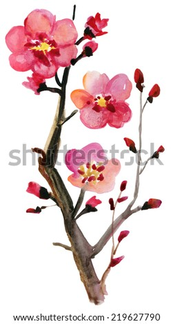 Flowering branch with fresh pink flowers. watercolor