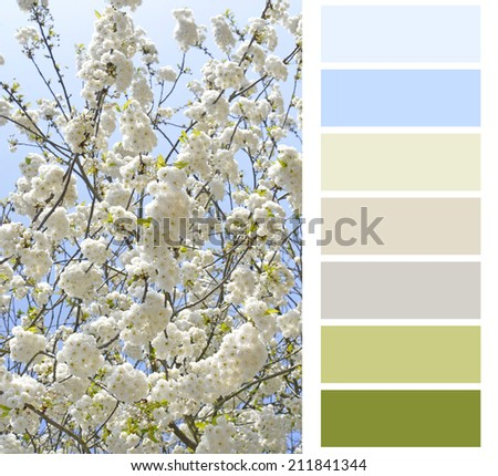 flowering color chart palette swatches - stock photo