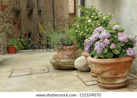 flowering plants in decorated ceramic vases on tuscan narrow street, Anghiari small town, Italy, Europe - stock photo