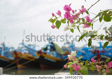 flowering plants in Vietnam
