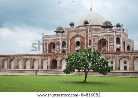 Flowering tree and Humayun's tomb in Delhi, India as an example of early Mughal architecture - stock photo