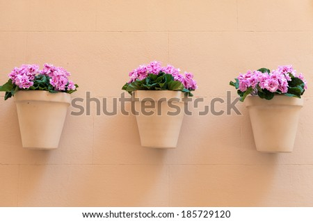 flowerpots with pink flowers hanging on a house wall - stock photo
