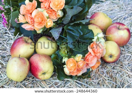 flowers and apple on hay - stock photo