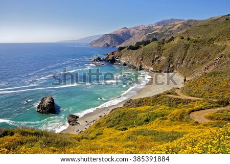Flowers and beach at Big sur - stock photo