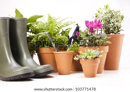 Flowers and garden tools on sky background