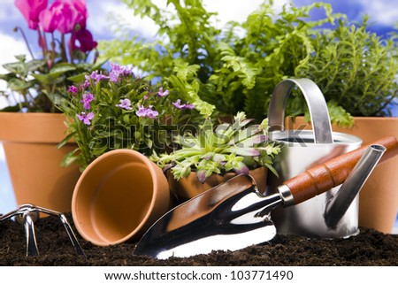 Flowers and garden tools on sky background - stock photo