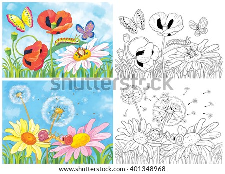 Flowers and insects. Fine summer day. Beautiful daisies, poppies, dandelions and cute insects. Butterflies, snails and a caterpillar. Illustration for children. Coloring pages. - stock photo