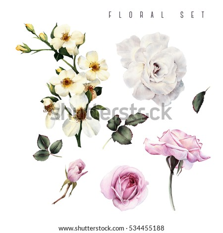 Flowers and leaves, watercolor, can be used as greeting card, invitation card for wedding, birthday and other holiday and  summer background.