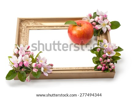 flowers and ripe apple in a frame isolated on white background - stock photo