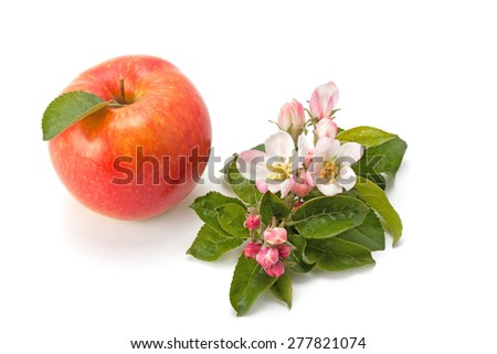 flowers and ripe apple, isolated on white background - stock photo
