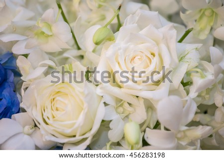 flowers and rose for decoration