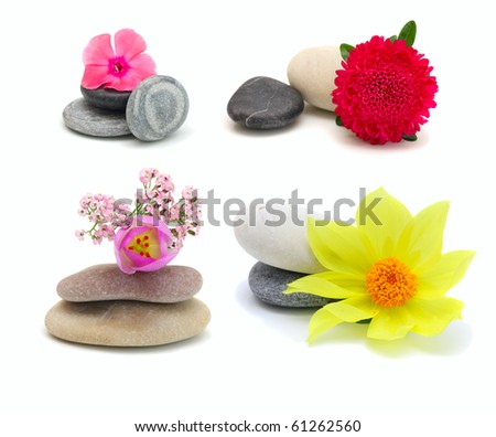Flowers and stones, isolated on white. - stock photo