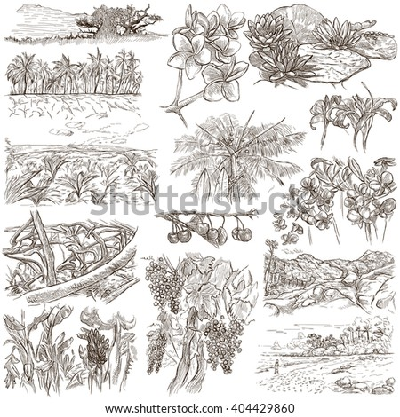 FLOWERS and TREES. Collection of an hand drawn illustrations. Description, Full sized hand drawn illustrations - freehand sketches. Drawings on white background. - stock photo