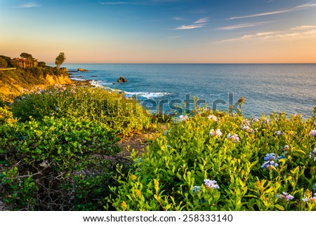 Flowers and view of the Pacific Ocean from cliffs in Corona del Mar, California. - stock photo