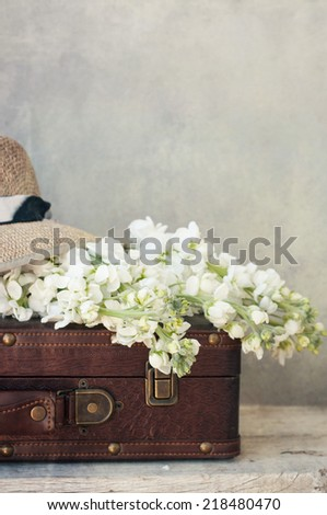Flowers and vintage suitcase - stock photo
