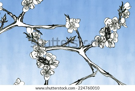 Flowers apricots on a sky-blue background, graphics - stock photo