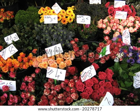 Flowers at farmers market - stock photo