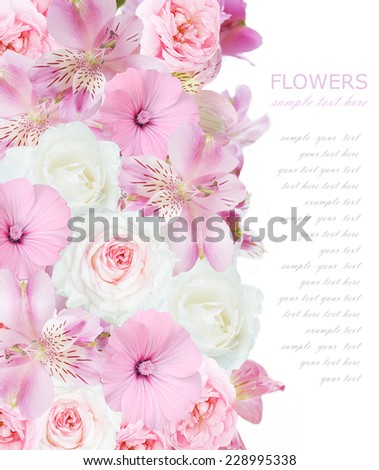Flowers background isolated on white with sample text  - stock photo