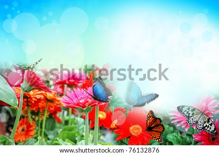 Flowers background with butterflies - stock photo