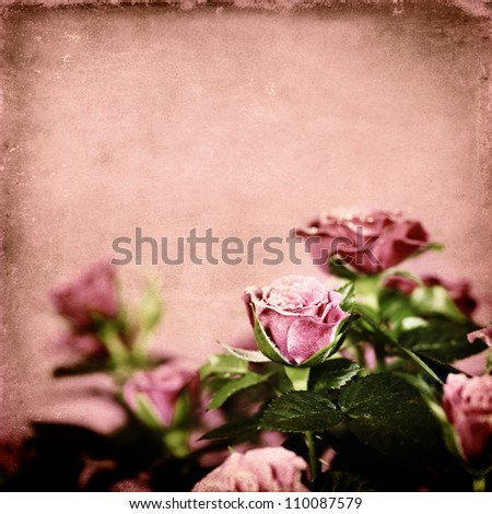 Flowers background with pink roses