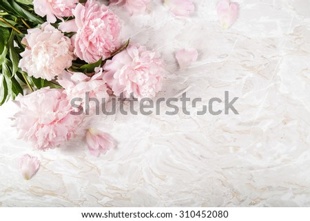 Flowers. Beautiful peony on the table - stock photo