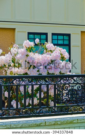 Flowers behind the metal fence. Landscape design. - stock photo
