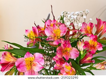 flowers bouquet pink alstroemeria arrange for decoration in home, selective focus - stock photo