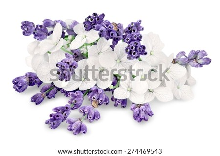 Flowers, bunch, white.