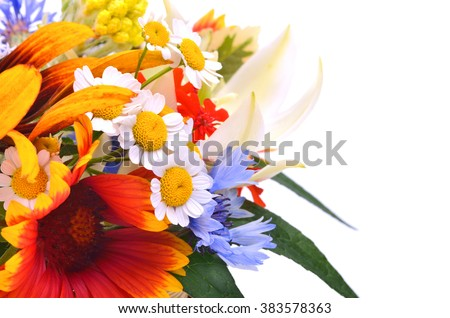 Flowers, chamomiles, chrysanthemums, cornflower isolated on white.