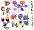 flowers collection of roses violet carnation Lily majors - stock photo