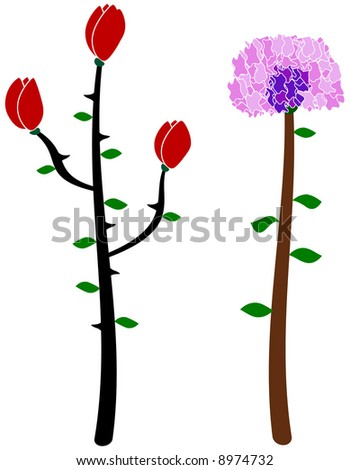 flowers depicting a rose/tulip and carnation