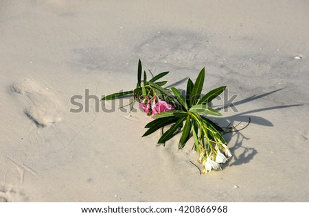 Flowers from a Wedding Celebration laying in the sand on the beach - stock photo