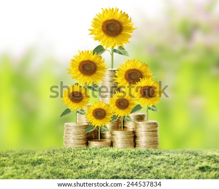 Flowers growing from a money - stock photo