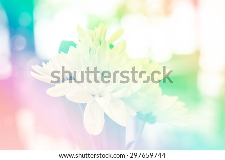 Flowers in a restaurant with Soft Focus Color Filtered background. - stock photo